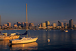 Sailboats moored in San Diego Bay along harbor drive with skyline in background looking across bay, sunset light, San diego, California USA