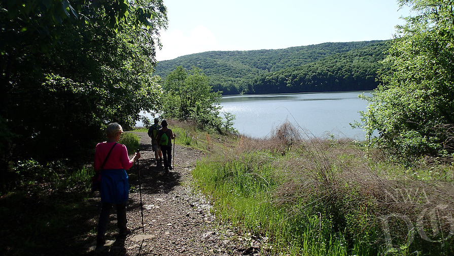 NWA Democrat-Gazette/FLIP PUTTHOFF <br /> A hike on the Ozark Highlands Trail and Shepherd Springs Loop offers views of Lake Fort Smith and surrounding forest.  Hikers start a trip April 27, 2016 at Lake Fort Smith State Park.