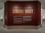 Kehinde Wiley: A New Republic Installation Views