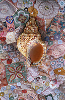 Shell and embroidered textile. at the home of designer Ena de Silva.