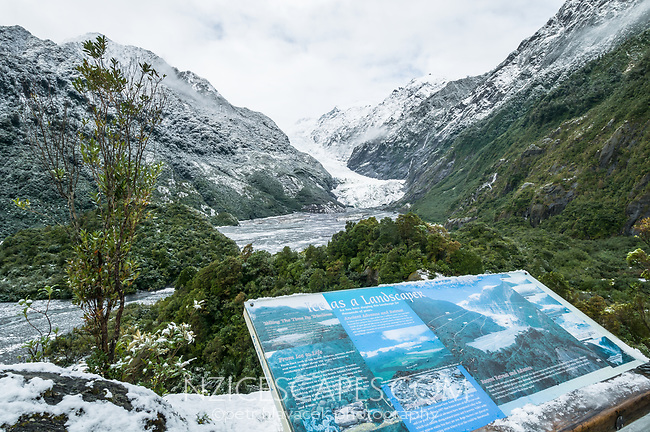 Fresh snow on Franz Josef Glacier as seen from Sentinel Rock in winter, Westland Tai Poutini National Park, West Coast, UNESCO World Heritage Area, South Westland, New Zealand, NZ