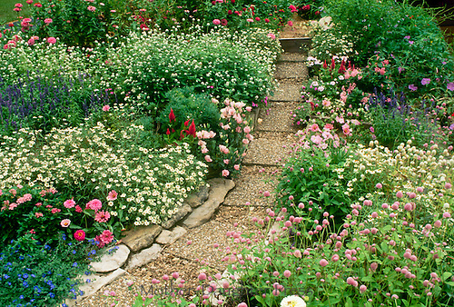 Pastel garden in bloom with pathway made of aggregate block pavers and