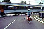 Ben At Train Crossing