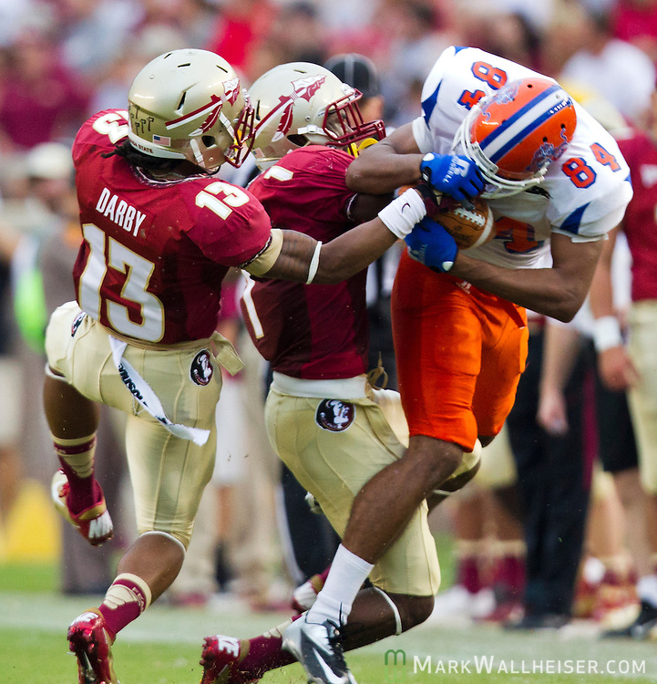 FSU defensive back Ronald Darby (13) and Tyler Hunter strip the ball from  Savannah State receiver Dylan Cook as the 6th ranked Florida State Seminoles defeated the  Savannah State Tigers 55-0 in a weather shortened game that was called with more than 8 minutes left in the third quarter  of their NCAA football game at Doak Campbell Stadium in Tallahassee, Florida September 08, 2012.