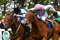 Winner of The Smith & Williamson Maiden Fillies' Stakes (Div 2), Mam'selle black cap ridden by Robert Winston and trained by William Haggas during Afternoon Racing at Salisbury Racecourse on 18th May 2017