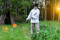 Farmer using scythe to mow grass traditionally in Estonia. Hut, meadow, sun flare.