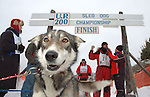 U.P. 200 Sled Dog Race, Marquette, 2005