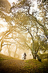 A mountain biker takes an early morning ride through the fog in Briones Regional Park near Moraga, Calif.