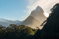 Mitre Peak 1692m of Milford Sound, Fiordland National Park, Southland, World Heritage Area, New Zealand