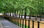 United Kingdom, Great Britain; England; London. A shady bike lane along London's Royal Gardens.