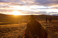 Men walk with their horses after herding vicunas in the Peruvian Andes.
