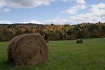 Traditional rolled bales of hay dry in a field near Stowe Vermont, on a sunny September day.