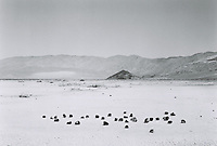 Death Valley Rocks on a dry lake bed