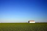 A barn on the rice fields, Isla Mayor, Donana marshland, Spain
