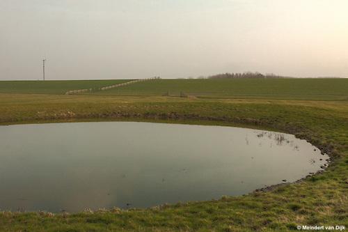 Buitendijks kweldergebied van waterschap Blija Buitendijks.<br /> Waterschap Blija Buitendijks is het kleinste waterschap van Nederland. Het waterschap beheert 100 hectare weiland, gelegen bij het dorp Blija in het noorden van Friesland, tussen de Waddenzeedijk en zomerdijk. Direct achter de 2,25 m +NAP hoge zomerdijk bevindt zich het uitgestrekte kweldergebied van de Waddenzee. Bij hoogwater (vloed) stroomt het buiten de zomerdijk gelegen kwelder regelmatig onder water. Bij extreem hoog water, bijvoorbeeld bij springtij en noordwesterstorm komt het zeewater vanuit de Waddenzee ook over de zomerdijk. De door het waterschap beheerde polder komt dan geheel onder water te staan, soms zelfs tot halverwege de Waddenzeedijk. Bij afgaand tij (eb) stroomt het zeewater via de klepstuwen in de zomerdijk terug naar de Waddenzee. <br /> Op de voorgrond een dobbe, een door een aarden wal omgeven drinkplaats voor vee. Overstroming van de dobbe met zeewater komt zelden voor. De dobbe is daarom ook geschikt als hoogwatervluchtplaats voor het buitendijks geweide vee.<br /> Op de achtergrond is de Waddenzeedijk (op Deltahoogte) te zien.