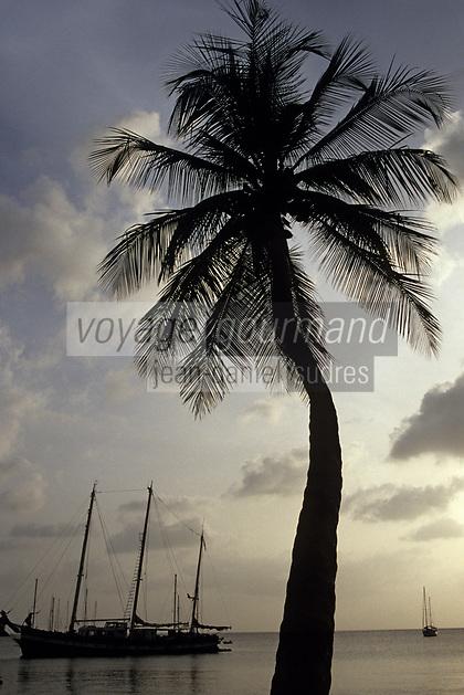 France/DOM/Martinique/Les Anses-d'Arlets: Bateau et cocotier