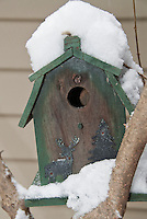 Bird house in winter snow cute