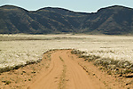 Africa, Namibia - Dirt track toward remote Puros from Sesfontein