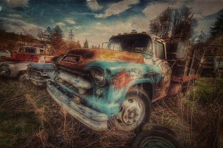 Abandoned truck in woodland