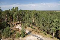 View from Rannametsa Tornimäe Tower,..Pärnu-Ikla Recreation Area,  Pärnu County, Estonia, Europe
