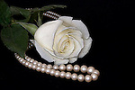 A white rose and white pearls lay on a black background.