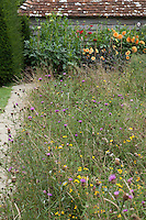 Wildflowers grow alongside a stone path which leads to a border of dahlias