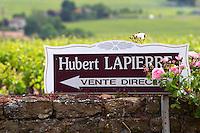 domaine h lapierre beaujolais burgundy france