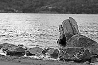 Lake Mendocino rises up around rocks and a stump on shore near Ukiah in Mendocino County in Northern California.