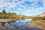 Oasis with date palms at the Draa river with cloudy blue sky reflected in the water, Draa valley, Morocco.
