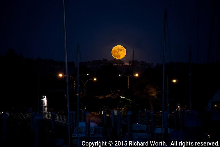 Moored boats at the San Leandro Marina under a rising warm golden Full Beaver Moon.