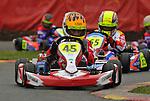 Stars, Comer Cadet, Rowrah, Prima racing, Dan Zelos, Kartpix.