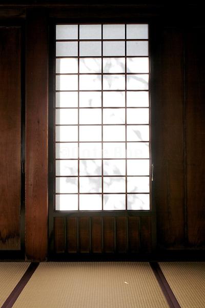 shadow of garden tree twigs projection on traditional paper window of sliding door Japan