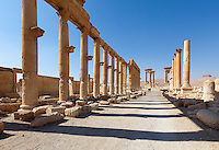 Great Colonnade, Palmyra, Syria. Ancient city in the desert that fell into disuse after the 16th century.
