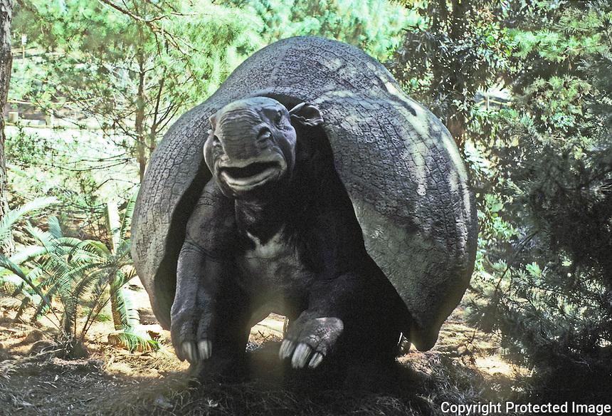 Pre-historic Animals: Glyptodont or Doedicurus. Pleistocene--1 million years ago. Shell like a turtle. Ht., 6-7 ft. Diet: plants. South America.