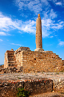 Column from the temple of Apollo, the Greek archaeological site of Ancient Aegina, Kolna, Greek Saronic Islands
