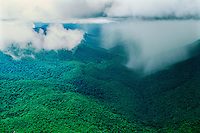 Aerial of tropical rainstorm showig rainshaft at base of cumulonimbus cloud in Guiana Highlands, Amazonas State, Venezuela.