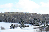 Winter scenic of back fields of farm, trees pasture and fields under snow cover