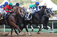 HOT SPRINGS, AR - March 18: The field runs past the finish line for the first time as horses fight for the leading position; Malagacy #6 (on left) and jockey Javier Castellano  go on to win the Rebel Stakes (Gr.2) at Oaklawn Park on March 18, 2017 in Hot Springs, AR. (Photo by Ciara Bowen/Eclipse Sportswire/Getty Images)