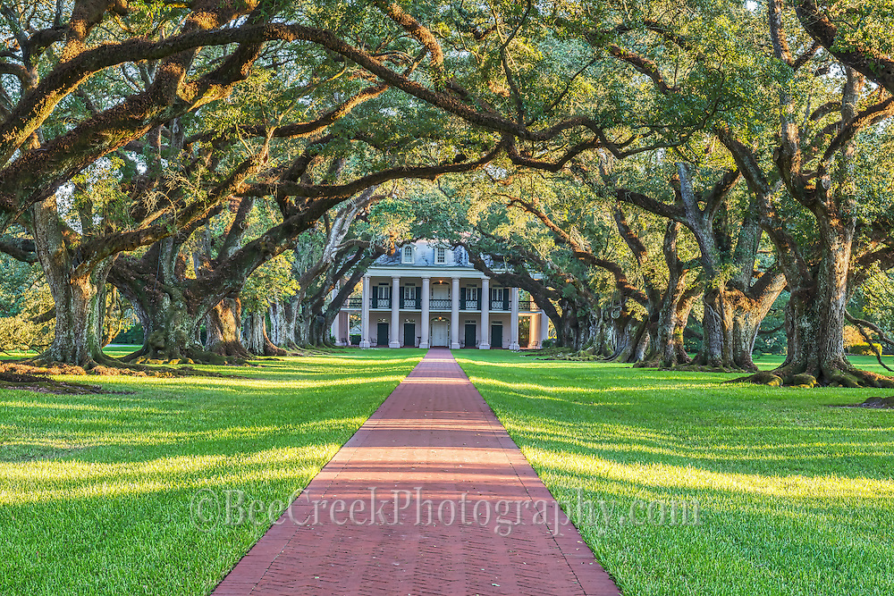 A beautiful view of the mansion at Oak Alley in the late afternoon as teh sun was setting lower in the sky.  We stayed in one of the cottages on the plantation so we could have access and it was a very positive experience. This view of course  is the traditional image with these great 300 year old oak trees lining the sidewalk to the great house on this sugar plantation. The sun was just starting to peak through the tree branches in the late afternoon to reflect their beauty as they created this wonderful cover along the sidewalk..