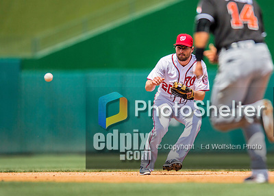 14 May 2016: Washington Nationals second baseman \was20\ in action during the first game of a double-header against the Miami Marlins at Nationals Park in Washington, DC. The Nationals defeated the Marlins 6-4 in the afternoon matchup.  Mandatory Credit: Ed Wolfstein Photo *** RAW (NEF) Image File Available ***