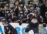 The Oklahoma City Barons bench celebrates the overtime win after an AHL hockey game against the San Antonio Rampage, Thursday, May 10, 2012, in San Antonio. Oklahoma City won 2-1. (Darren Abate/pressphotointl.com)