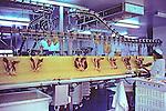 Factory Producing Foie Gras Near Mugron