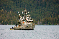 Commercial l Seine fishing vessel Kodiak Sockeye in College Fjord, Prince William Sound, southcentral, Alaska.