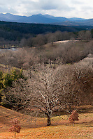 View of Mt. Pisgah, French Broad River, and backyard landscaping to Biltmore Estate