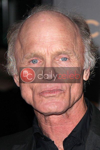 Ed Harris<br /> at the &quot;Phantom&quot; Premiere, Chinese Theater, Hollywood, CA 02-27-13<br /> David Edwards/DailyCeleb.com 818-249-4998