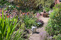 Cottage garden with Crocosmia bold foliage at left, persicaria, watering cans, brick house, Phormium specimen, stone path walkway, herbs, flowers, mixture of rambling plants, garden tool, table, container plants