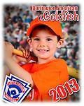 2013 Burlington American Goldfish