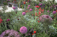 Backyard garden &amp; patio in lavender and red colors with ornamental bronze fennel, lush flowers, herbs, bulbs, in late spring, early summer blooms, roses, garden view use