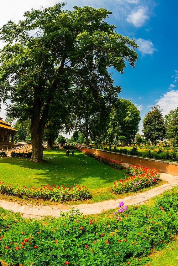 Shalimar Bagh (a Mughal Garden), near Srinagar, Kashmir, Jammu and Kashmir State, India.