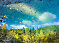 &quot;ROCKY BOTTOM SKY&quot;<br /> <br /> A rocky mountain scene of aspen and cottonwoods in fall color mountains and forest azure skies and white billowy clouds as reflected in a mountain pond. ORIGINAL 24 X 36 GALLERY WRAPPED CANVAS SIGNED BY THE ARTIST $2,500. CONTACT FOR AVAILABILITY.